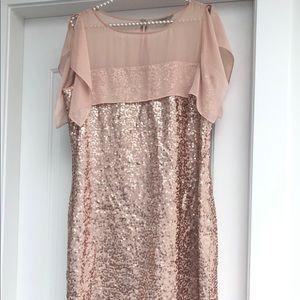 Beautiful RW & CO Sequin blush dress Sz Medium